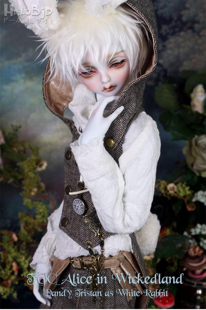 ドール本体 peaks woods pw 白ウサギ FOC LE White Rabbit 男の子 BJD人形 SD人形 1/3サイズ 人形ボディ製品図5