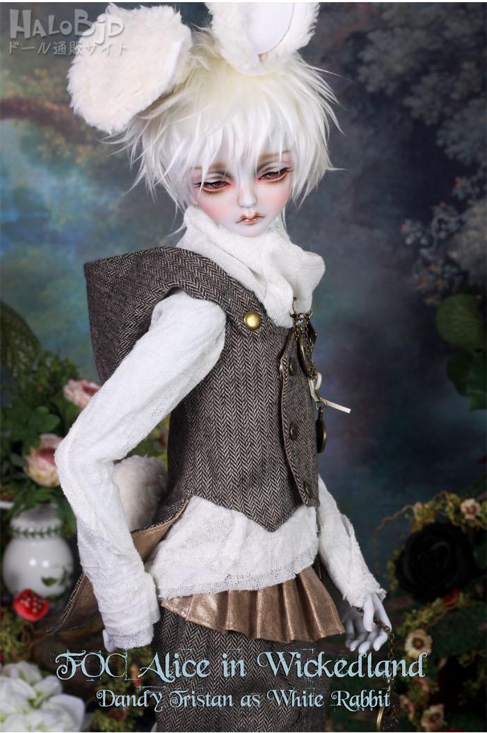 ドール本体 peaks woods pw 白ウサギ FOC LE White Rabbit 男の子 BJD人形 SD人形 1/3サイズ 人形ボディ製品図6