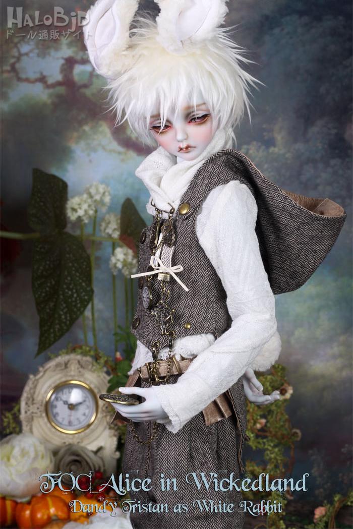 ドール本体 peaks woods pw 白ウサギ FOC LE White Rabbit 男の子 BJD人形 SD人形 1/3サイズ 人形ボディ製品図7