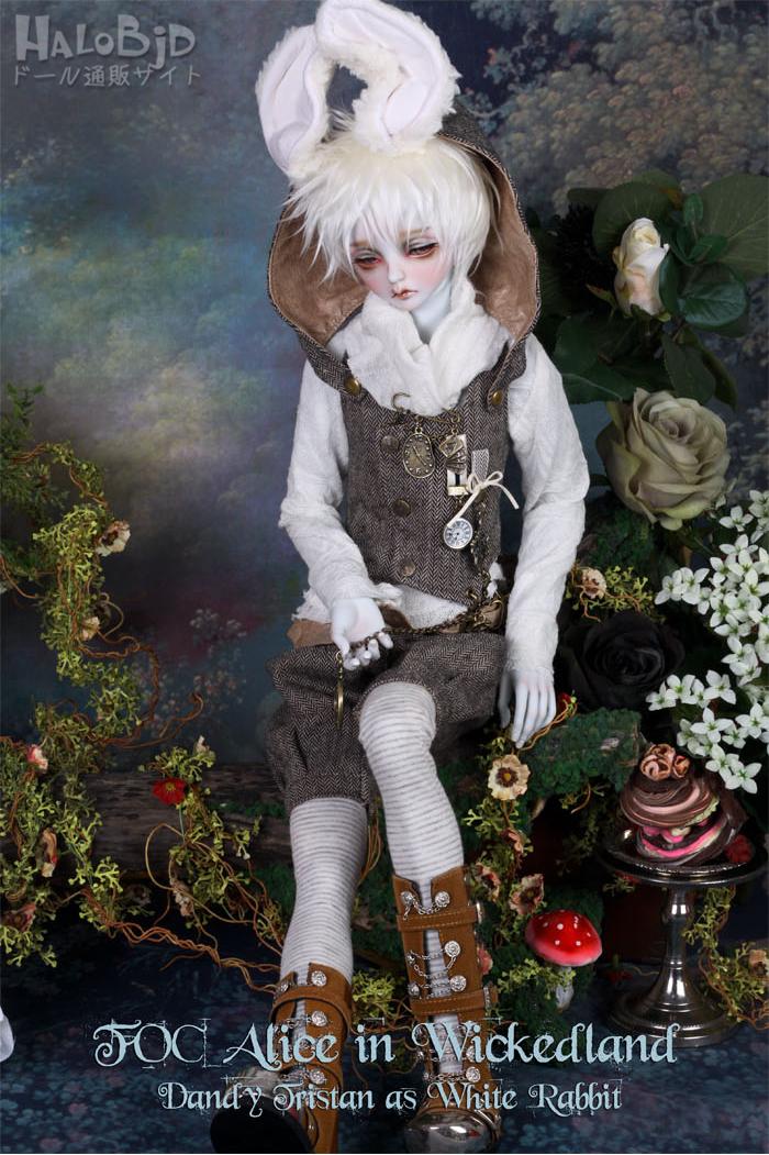 ドール本体 peaks woods pw 白ウサギ FOC LE White Rabbit 男の子 BJD人形 SD人形 1/3サイズ 人形ボディ製品図8