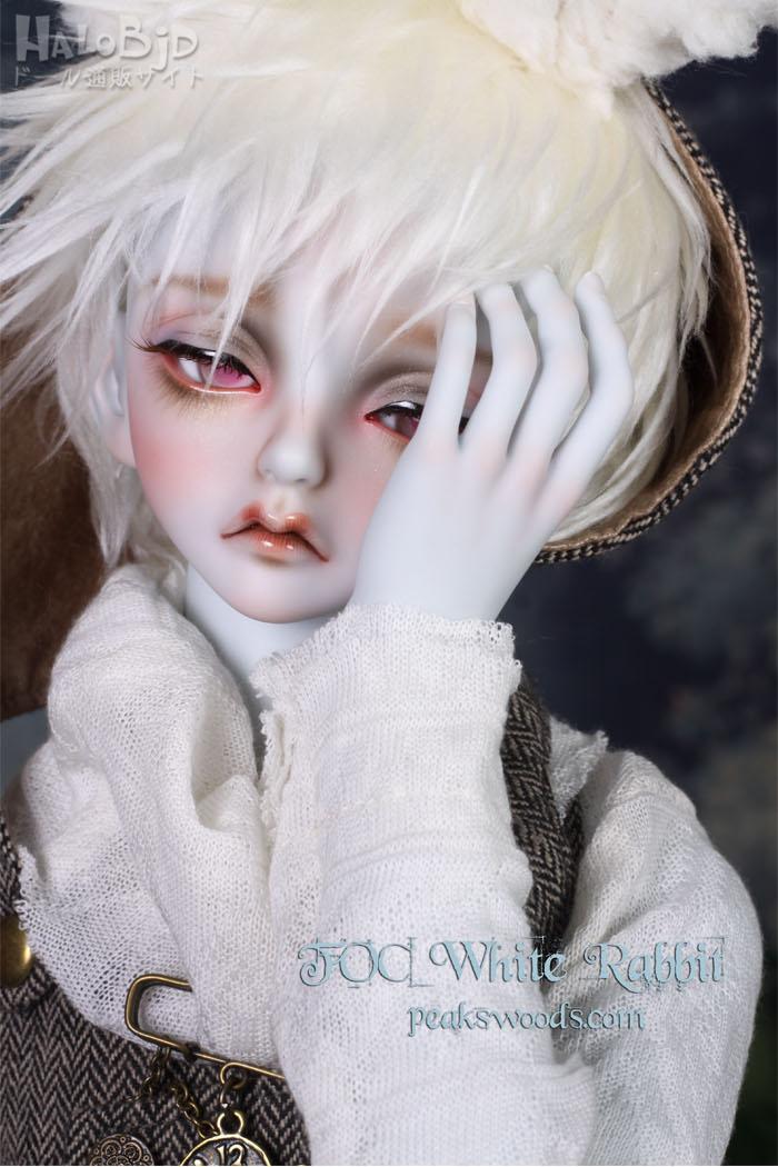 ドール本体 peaks woods pw 白ウサギ FOC LE White Rabbit 男の子 BJD人形 SD人形 1/3サイズ 人形ボディ製品図2