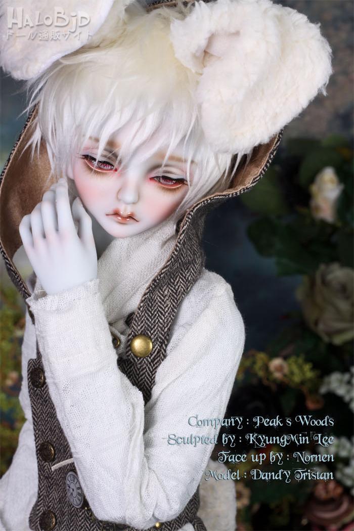 ドール本体 peaks woods pw 白ウサギ FOC LE White Rabbit 男の子 BJD人形 SD人形 1/3サイズ 人形ボディ製品図3