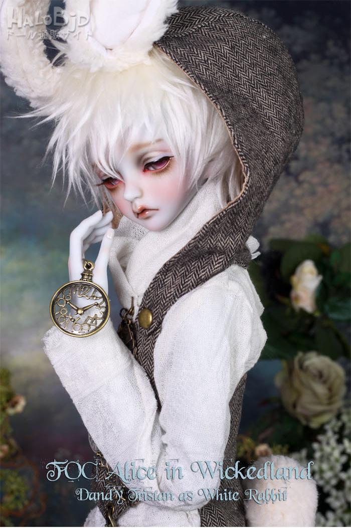 ドール本体 peaks woods pw 白ウサギ FOC LE White Rabbit 男の子 BJD人形 SD人形 1/3サイズ 人形ボディ製品図4